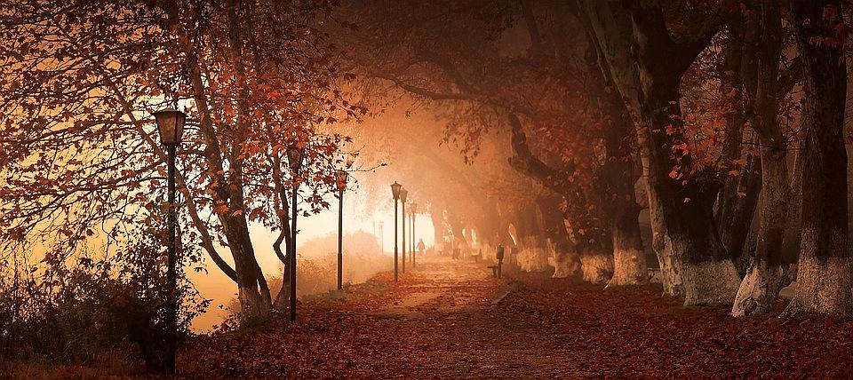 Jesienna depresja – Księga codzienności