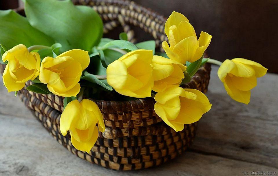 Kwiaty, bułeczki i wino
