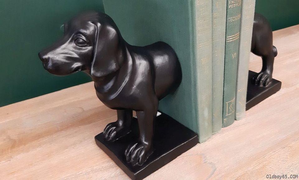 Mól książkowy który zszedł na psy